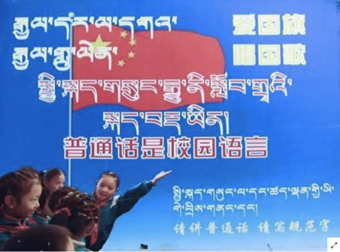 Tibetan netizens express the need for their mother-tongue